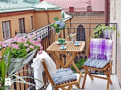 Растения для солнечного балкона